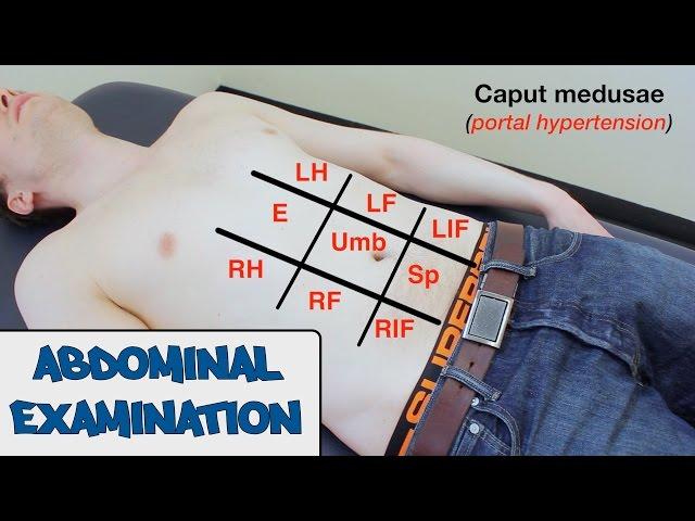 Abdominal Examination - (New Version)