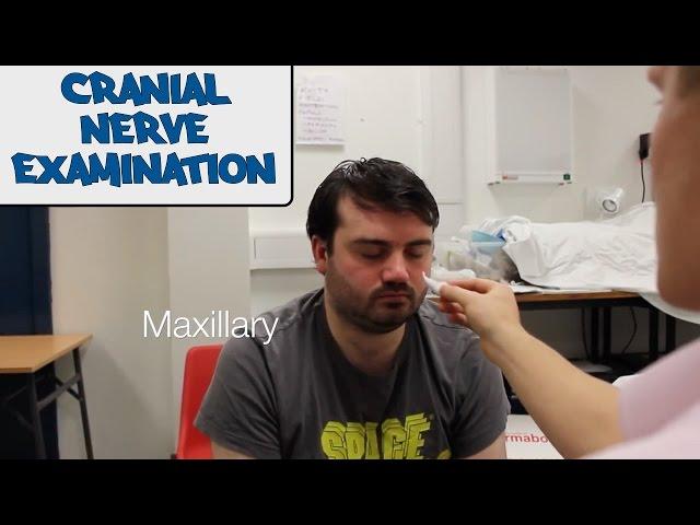 Cranial Nerve - Physical Exam