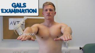 lower limb videos