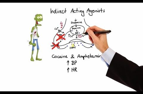 Pharmacology - ADRENERGIC RECEPTORS & AGONISTS (MADE EASY)