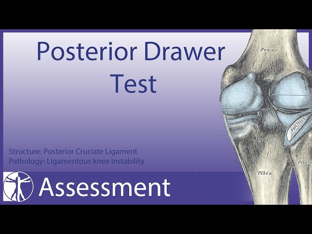 Posterior Drawer Test (Knee)- Physical Exam
