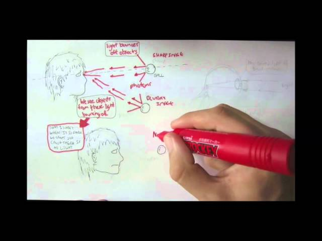Vision Physiology Introduction