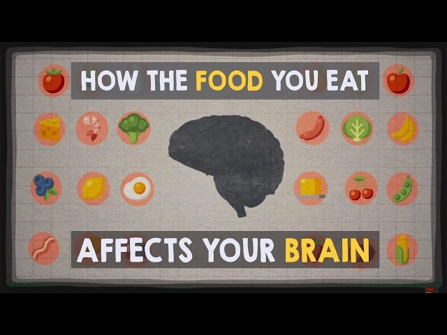 How The Food You Eat Affects Your Brain Ted Ed