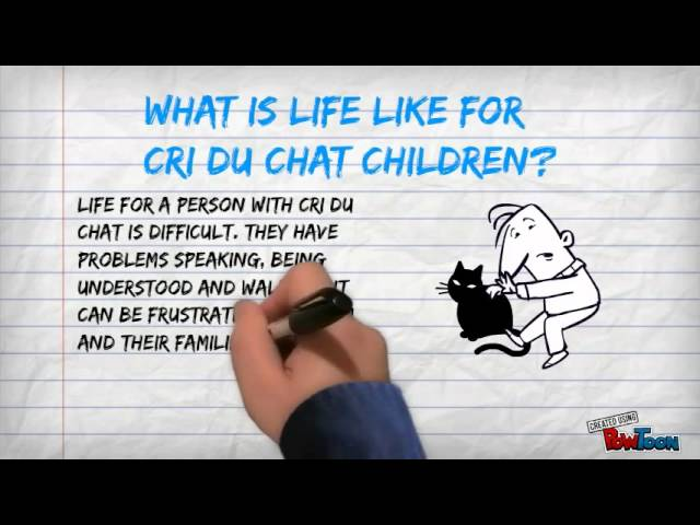 Genetic Disease Project: Cri Du Chat Syndrome