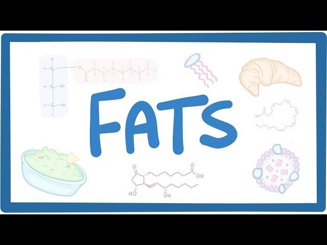 Fats - biochemistry