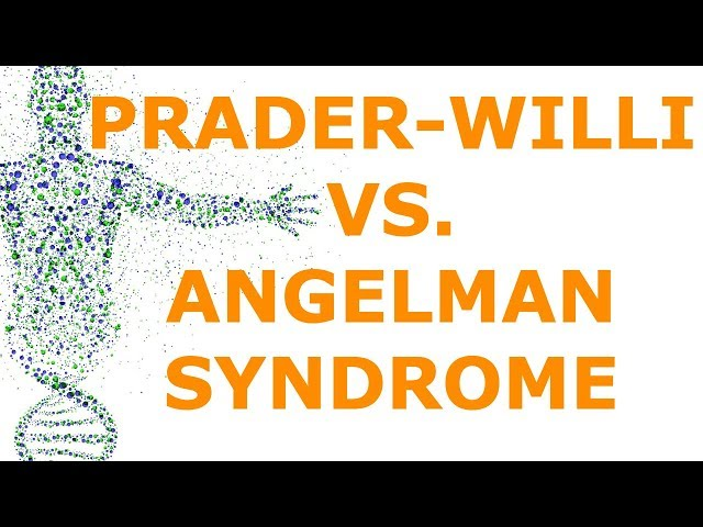 Prader-Willi vs. Angelman Syndrome (Imprinting)