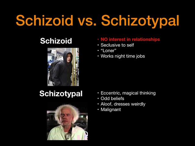 Schizophrenia vs. Schizophreniform vs. Schizoaffective vs. Schizoid vs. Schizotypal and More!