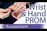 Passive Range of Motion: Wrist & Hand